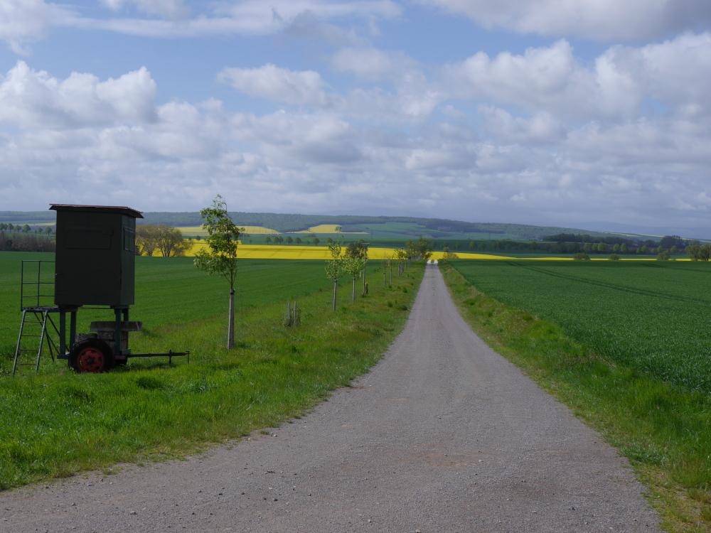 Eine Landschaftsaufnahme in ländlicher Gegend, man blickt von einem Berg einen Feldweg hinunter, auf der linken Seite des Feldwegs sind Bäume, Sitzstangen für Greifvögel und vorne ein fahrbarer Hochsitz. Die Felder rechts und links des Weges sind grün, weiter hinten sieht man ein leuchtend gelbes Rapsfeld und dahinter bis zum Horizont weitere Felder und in der Ferne Berge mit Wald.