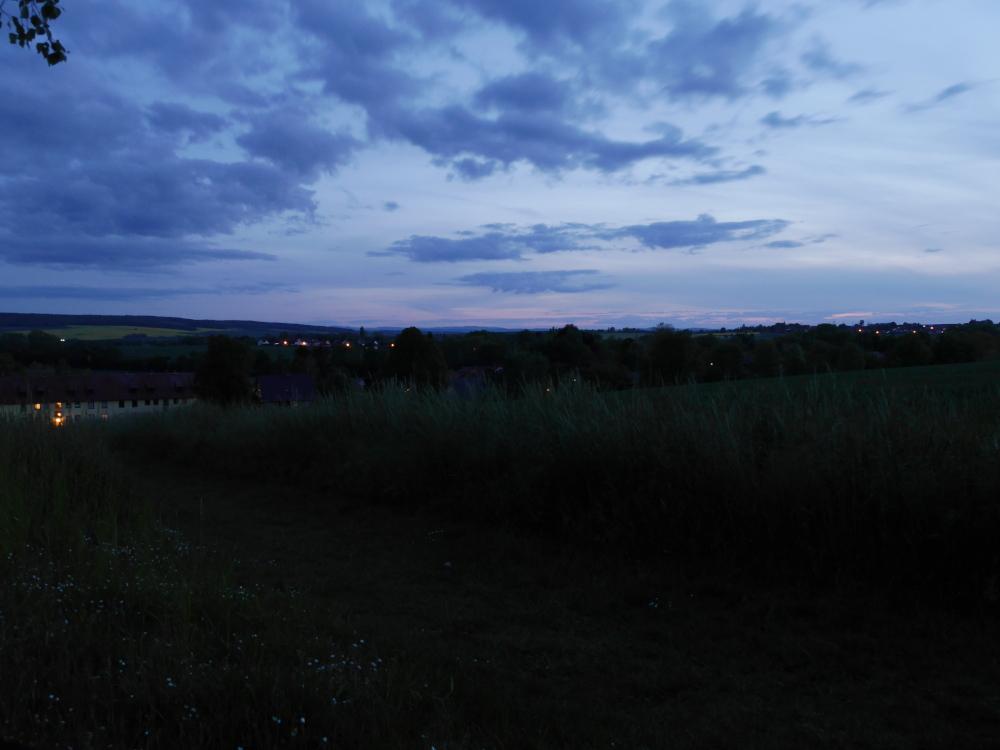 Eine Landschaftsaufnahme nach dem Sonnenuntergang, man sieht einen dunkelen, blauen Himmel, Bäume, Gräser und in der Ferne die Lichter von weiteren Dörfern.