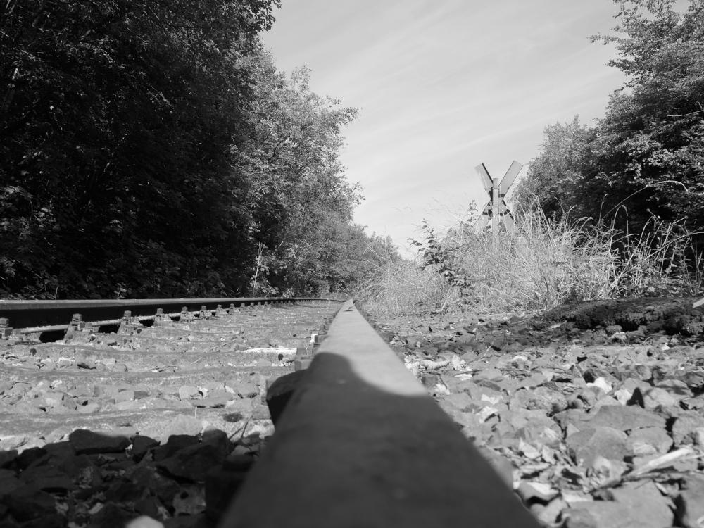 Ds Foto ist eine Schwarz-Weiß-Aufnahme einer alten, verrosteten Bahnstrecke. Kamerastandort ist auf der Schiene, das Gleis führt durch den Wald und verschwindet in einer Kurve. Rechts ist ein Andreaskreuz als Zeichen des Bahnübergangs zu erkennen.