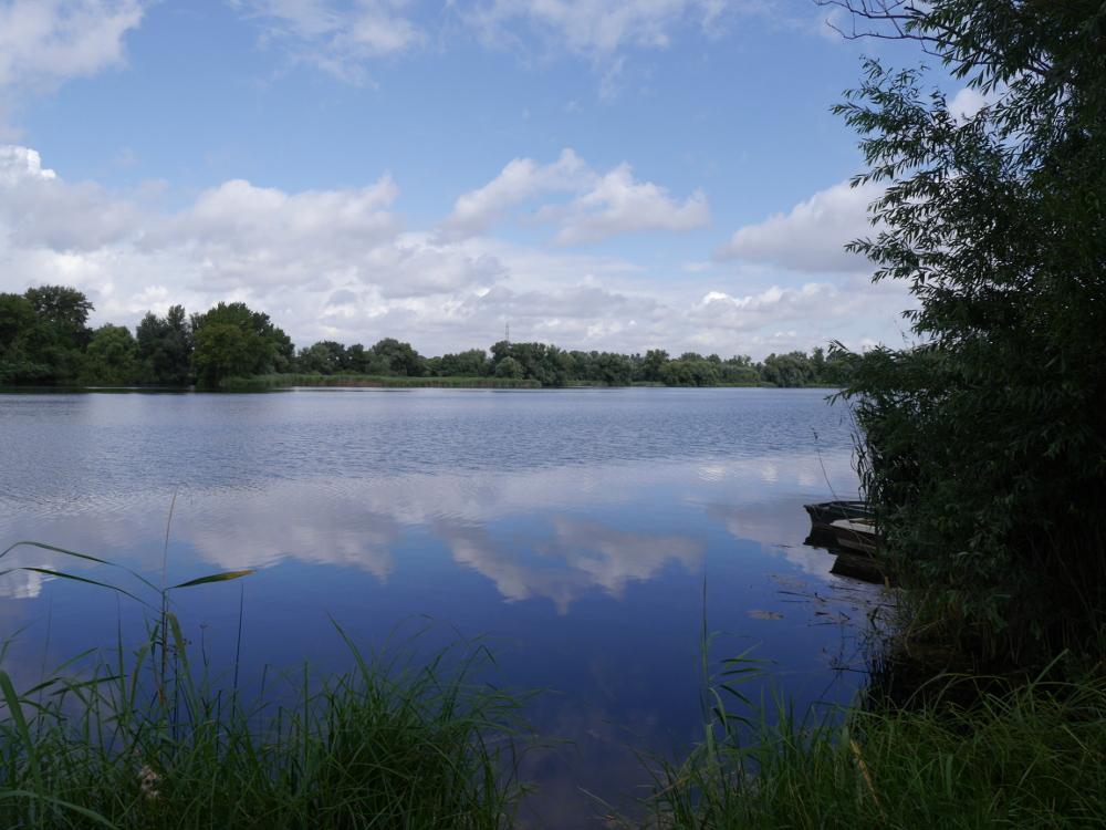 Eine Landscahftsaufnahme von einem See, der von Bäumen umgeben ist. Die Wolken spiegeln sich im blauen Wasser.